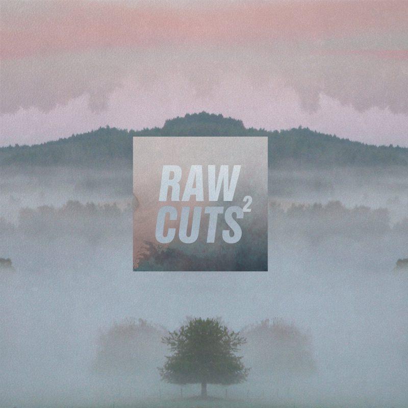 Chillhop - Raw Cuts 2