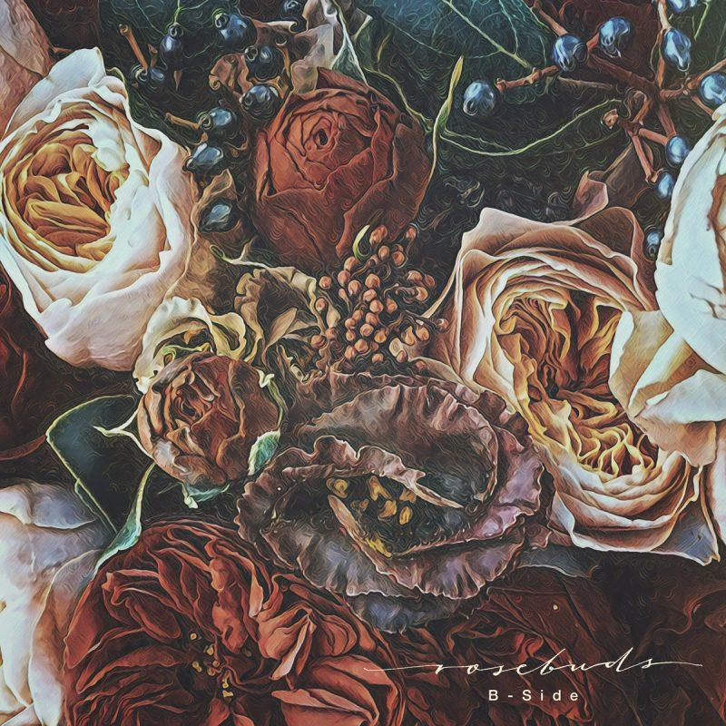 b-side - rosebuds